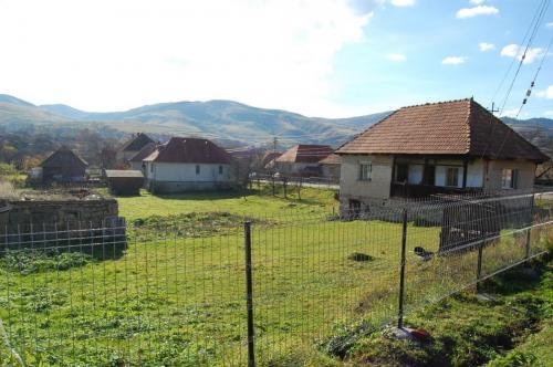 morlaca017 20121226 1309749907
